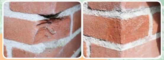 Repair Care Dry Flex CO