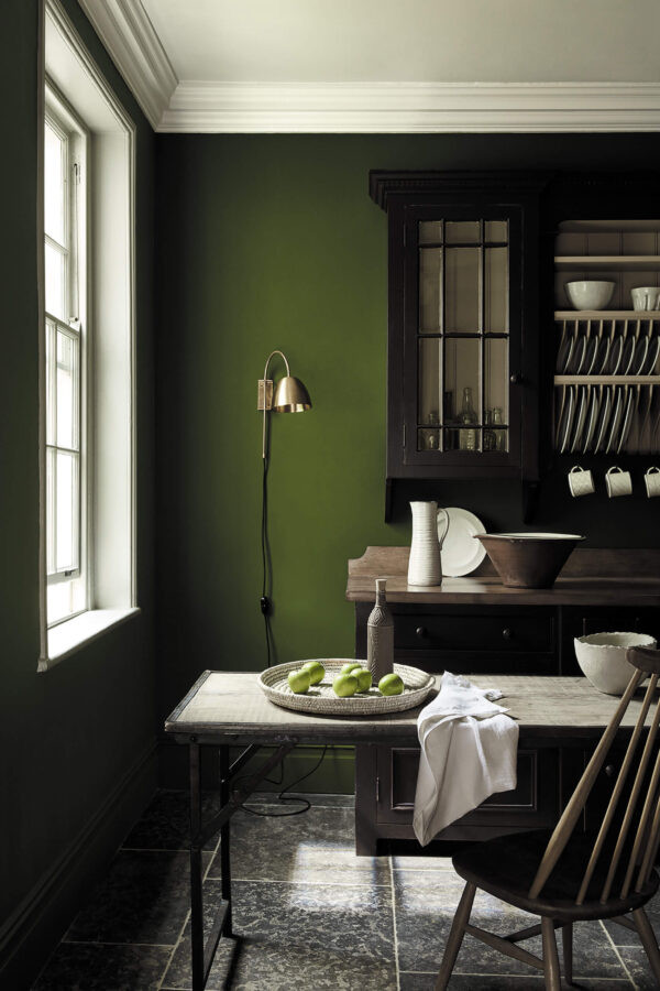 Little Greene Jewel Beetle 303